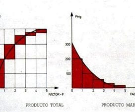 gráfico producto total - producto marginal